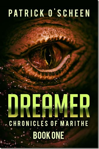 SEER guest post Dreamer cover