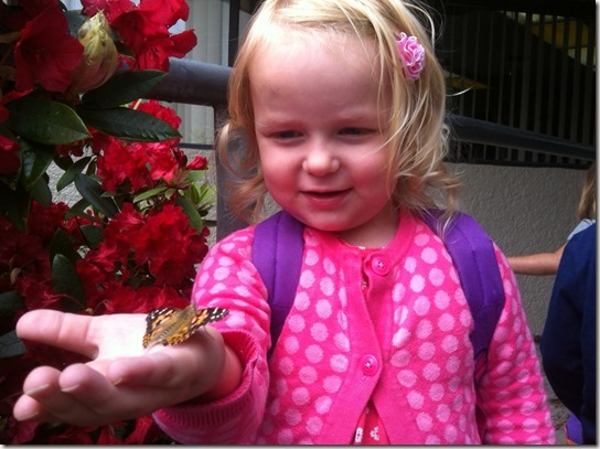 Brit & butterfly 2