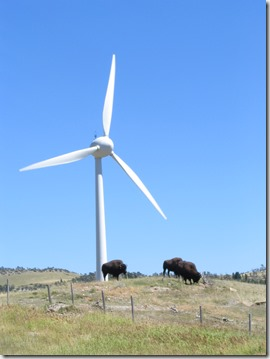 Wind mills outside Pincher Creek - Bruce Witzel