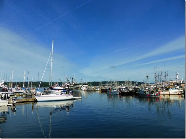 Port McNeill Harbour - Guenette photo