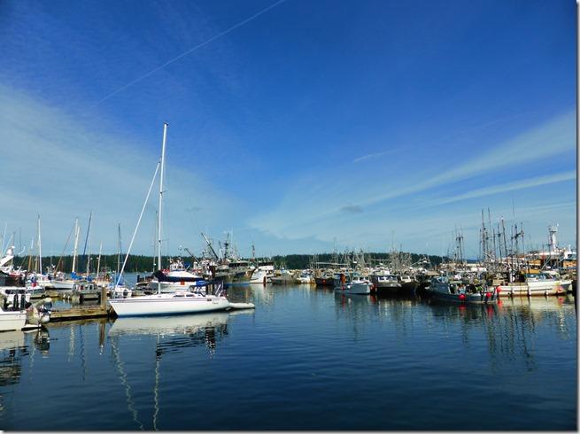 Port McNeill Harbour - Guenette photo