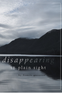 Disappearing_in_Plain_Sight