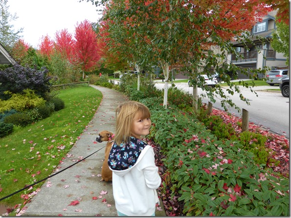 Emma - fall walk - Guenette photo