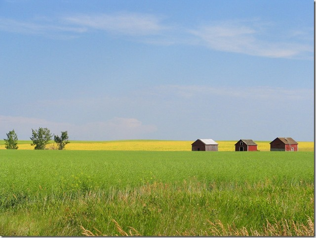 Alberta prarie farm - Bruce Witzel photo