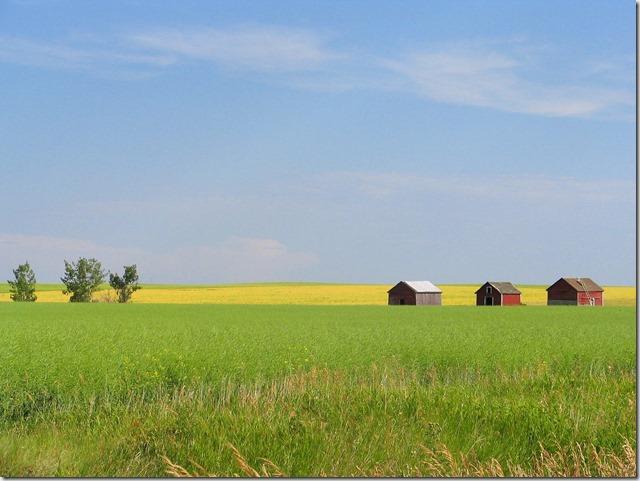 Alberta prarie farm - Bruce Witzel photo