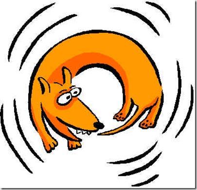 dog-chasing-tail - google image