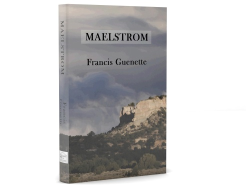 3-D cover of Maelstrom