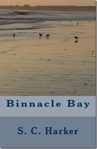 Cover for Binnacle Bay