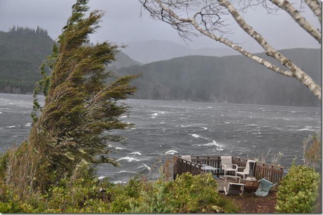 Northern Vancouver Island Storm Dec. 9, 2014 - bruce witzel