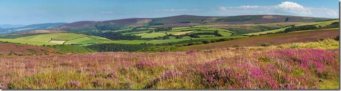 Somerset - Google images