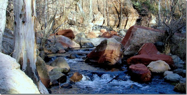 reds rocks ina stream near sedona