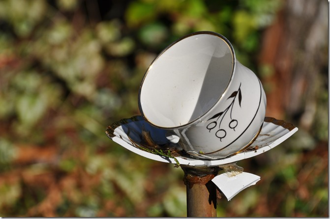 Broken teacup art - bruce witzel photo