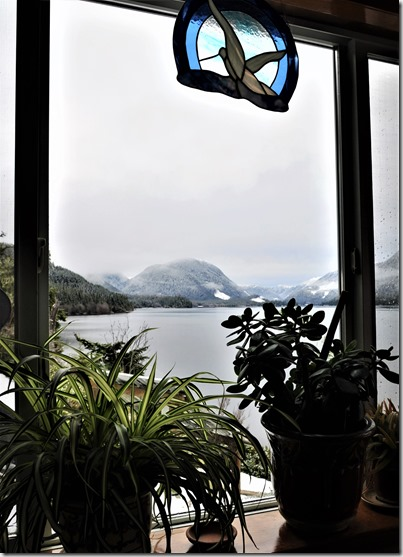 Lakeview from the bathroom, March 9-2017 - bruce witzel photo