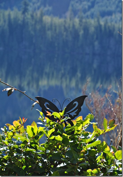 Butterfly sculpture overlooking the lake(2) -  bruce witzel photo