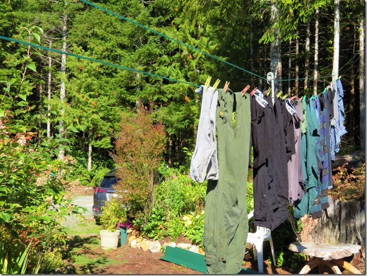 Laundry on the line in Oct.