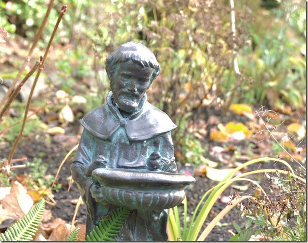 Saint Francis - Patron Saint of Ecology and the Poor