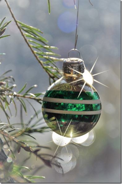 Glass Christmas Ornament with backlit, Dec. 23-2017 - bruce witzel photo