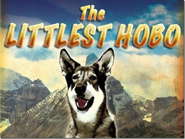 The Littlest Hobo - google images